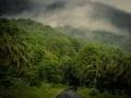 nelliyampathy-hills-palakkad-kerala